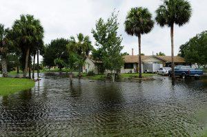 800px-FEMA_-_37590_-_Community_Flooding_in_Florida-300x199