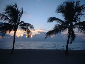 Fort_Lauderdale_beach_night-300x225